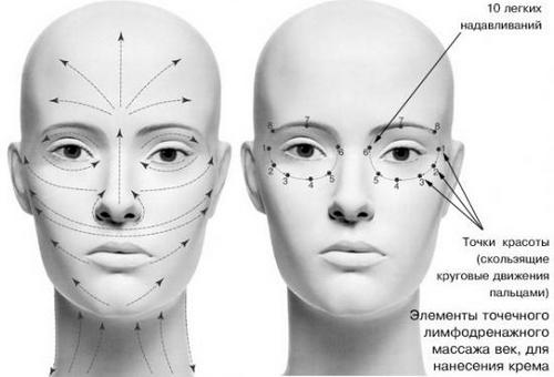 Массажные линии на лице для нанесения крема