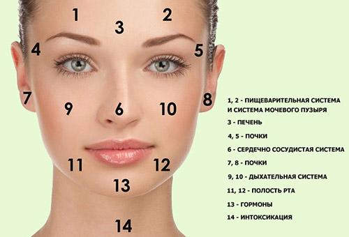 О чем говорит локализация сыпи на лице