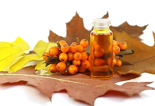 Облепиха и облепиховое масло на осенних листьях