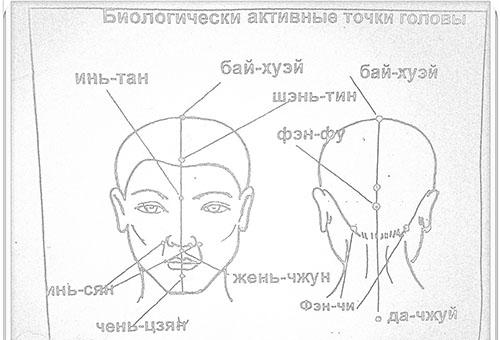 Массажные точки на голове